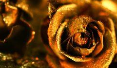 Эффекты золотого цвета по Фэн-Шуй