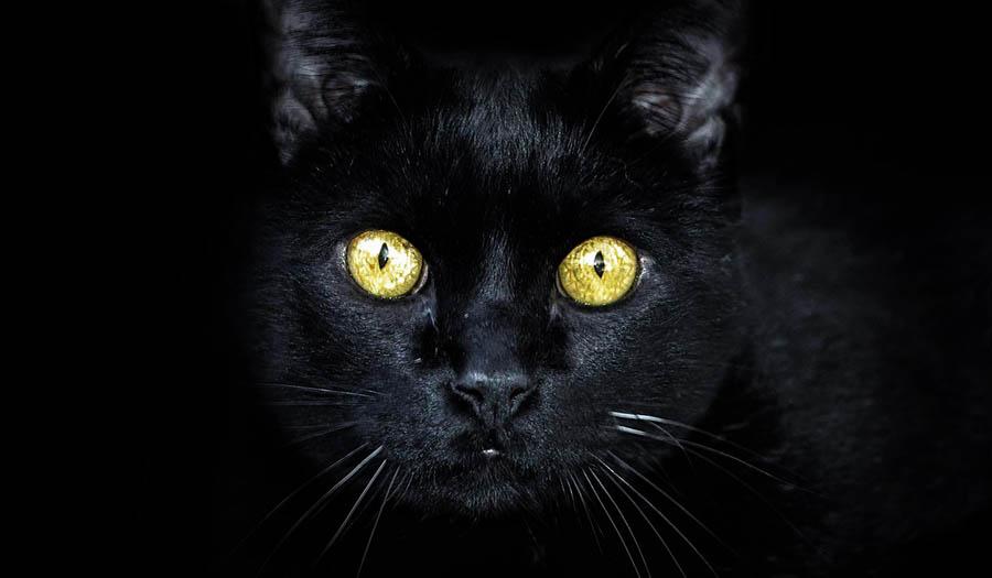 Пятница 13 - Истоки суеверия