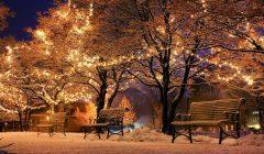 Гадание в Рождество